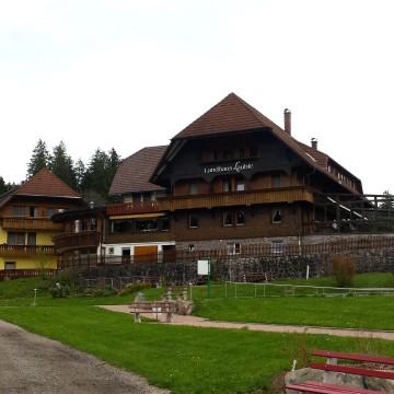 Schwarzwald -Seminar für Enterpreneure in Deutschland